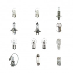 Pack 160 ampoules